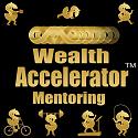 Wealth Accelerator Mentoring