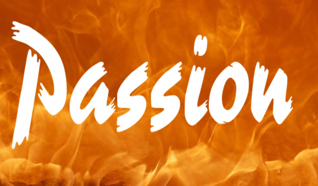 Video of the Week – Passion: The Secret Ingredient to Success