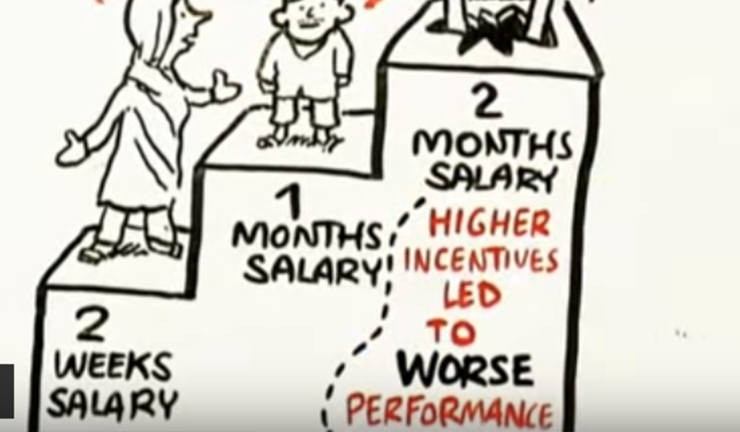 Video of the Week – The Puzzle of Motivation